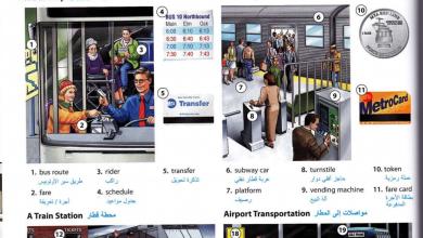 Photo of كتاب Oxford Picture Dictionary الرائع لمعاني الكلمات عربي – انجليزي + بالفيديو شرح استخدام الكتاب