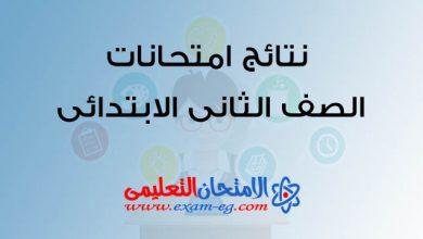 Photo of نتيجة الصف الثانى الابتدائى 2019 الترم الثانى