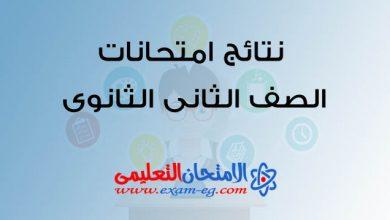 Photo of نتيجة الصف الثانى الثانوى 2019 الترم الثانى