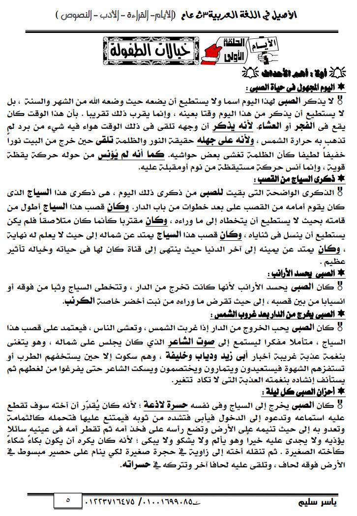 مذكرة عربى لثالثة ثانوى