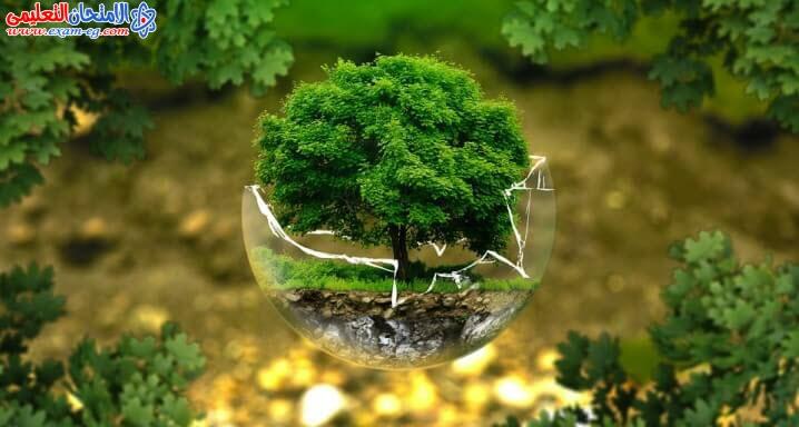 بحث البيئة اولى وتانية وثالثة اعدادى (9)