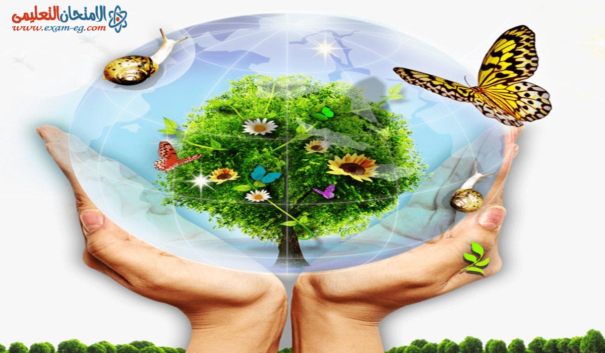 تغيرات البيئة