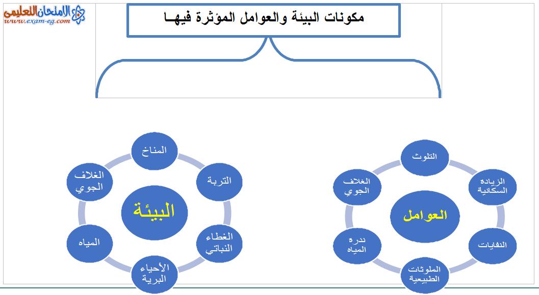مكونات البيئة والعوامل المؤثرة فيها
